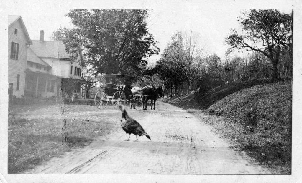 Turkey and Carriage in front of Pennyroyal Arms
