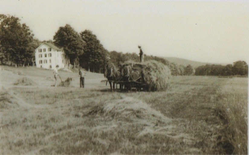 Gathering Hay at Pennyroyal