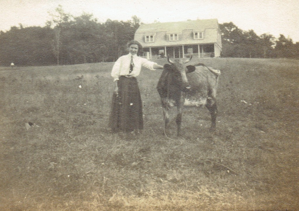 Edith Goyne with Cow and Walter House in Background
