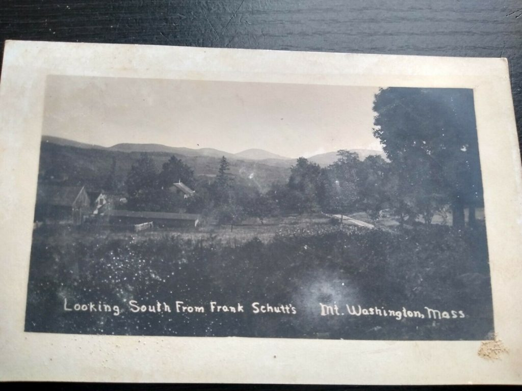 Looking South From Frank Schutt's (postcard)